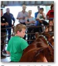 County Fair auction helps aid NE flood relief efforts