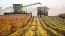Clay County farmers begin harvest