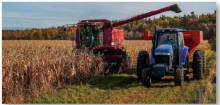 Harvest sees lower yields than typical